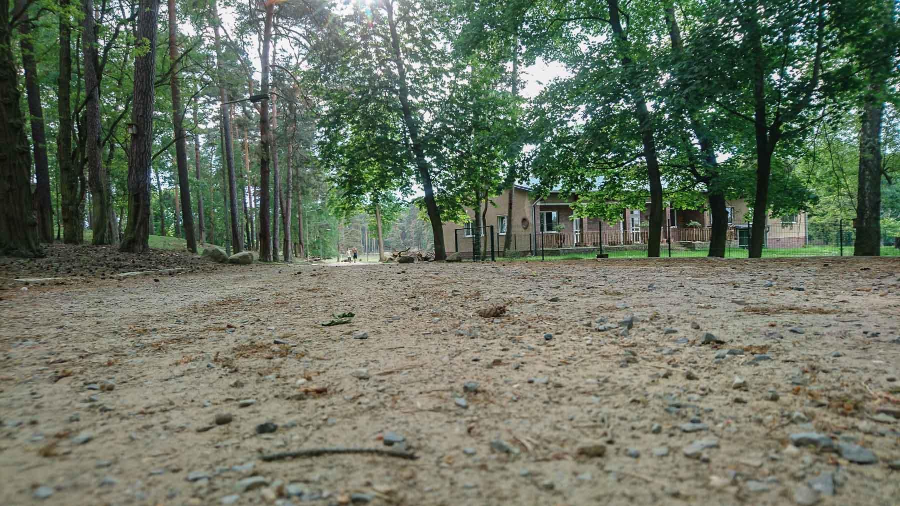 Wildpark Johannismühle Baruth