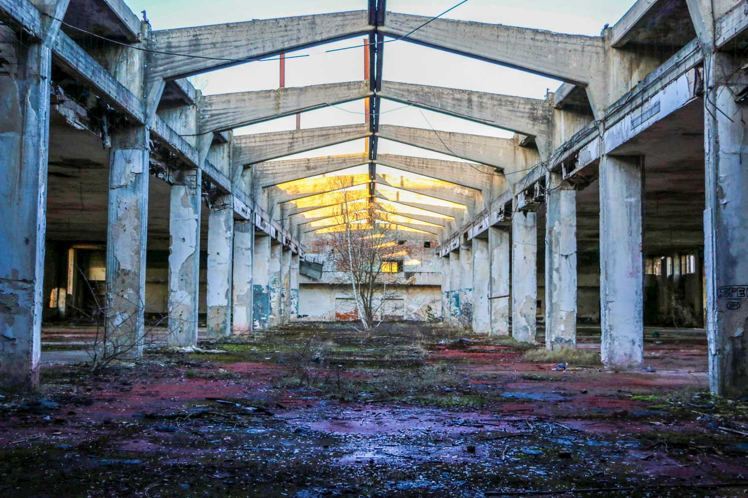 Lost Places Brandenburg Fliegerhorst