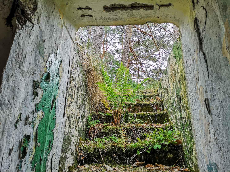 sowjetischer bunkerzugang brandenburg lost places